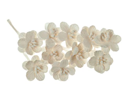 Цветки вишни, набор 10 шт, белый
