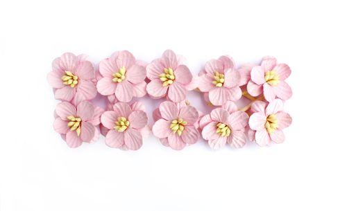 Цветки вишни, набор 10 шт, светло-розовый