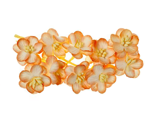 Цветки вишни, набор 10 шт, персиковый