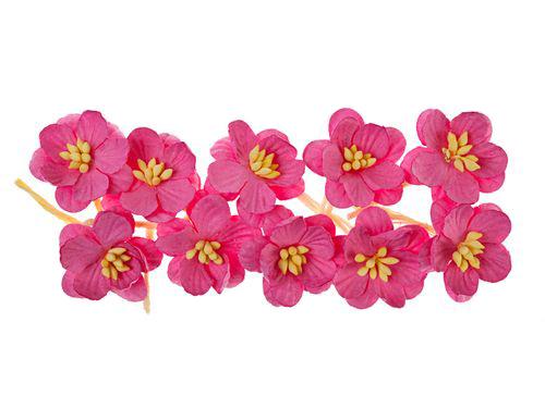 Цветки вишни, набор 10 шт, яркий розовый
