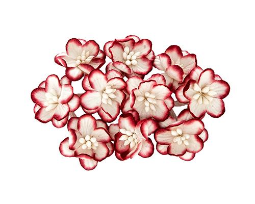 Цветки вишни, набор 10 шт, красный с белым