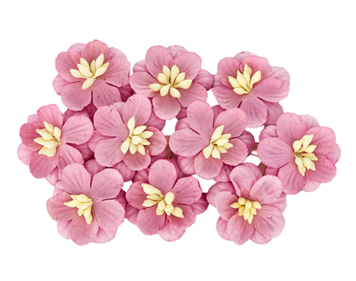 Цветки вишни, набор 10 шт, нежная роза