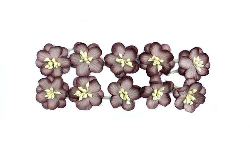 Цветки вишни, набор 10 шт, коричневый