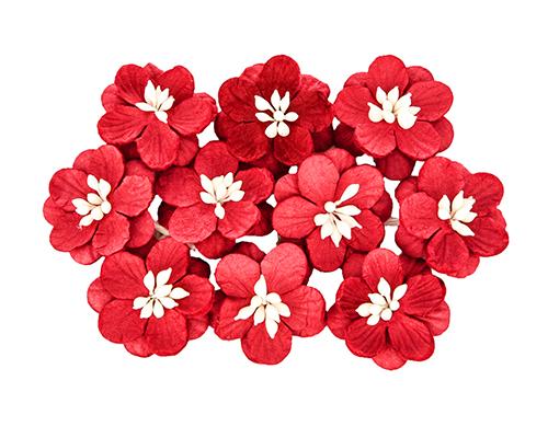 Цветки вишни, набор 10 шт Красный