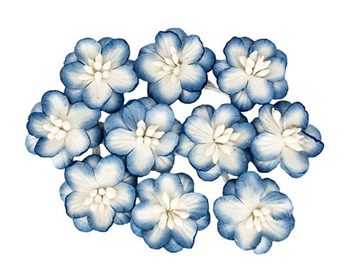 Цветки вишни, набор 10 шт Белый с синим