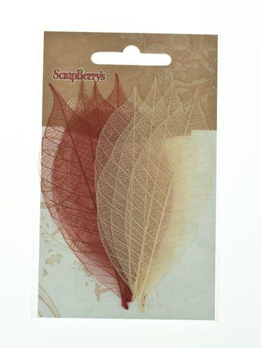 Скелетированные листочки из каучукового дерева, набор 8 шт, оттенки коричневого