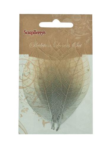 Скелетированные листочки из каучукового дерева, набор 8 шт, 2-цветный серебряный