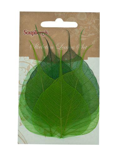 Скелетированные листочки из бананового дерева, набор 8 шт, зеленый