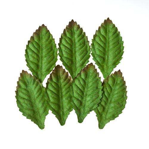 Набор листочков, 7 шт, Роза