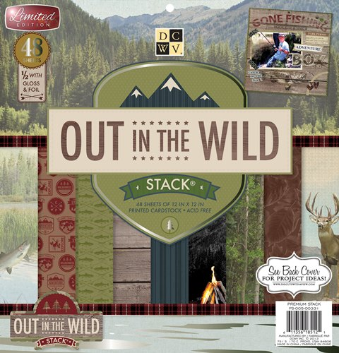 Out-in-the-Wild-PS-005-00331